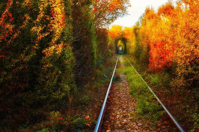 tunelul-iubirii_opt.jpg