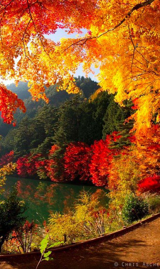 Locuri frumoase de vazut toamna in Romania